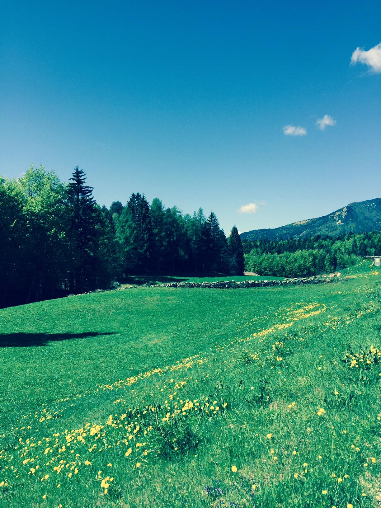 Ad agosto i corsi in montagna!